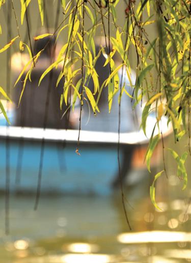 bateau_peche